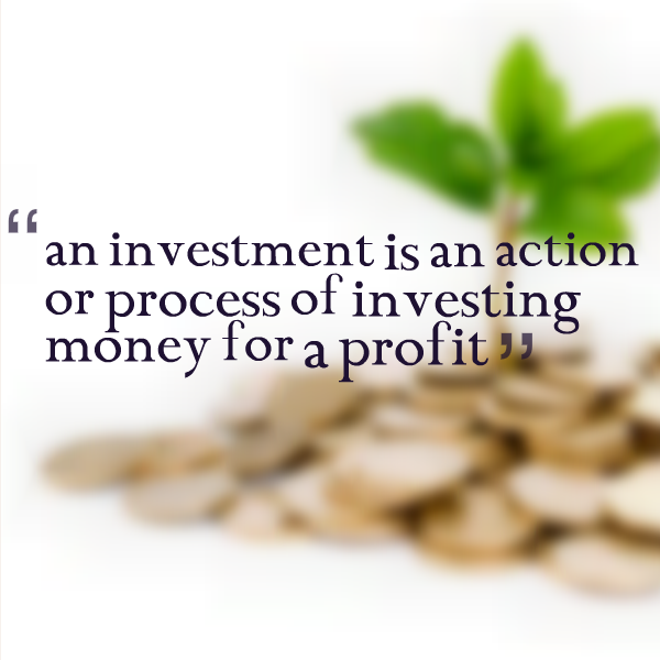 'an investment is an action or process of investing money for a profit'